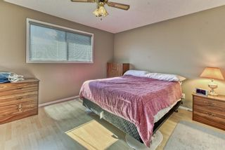 Photo 12: 19 Falshire Close NE in Calgary: Falconridge Detached for sale : MLS®# A1121159