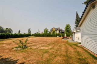 Photo 4: 4689 238 Street in Langley: Salmon River House for sale : MLS®# R2327028