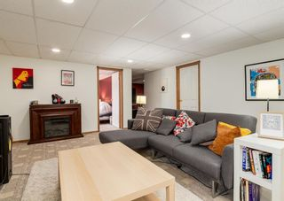 Photo 18: 136 MT ABERDEEN Manor SE in Calgary: McKenzie Lake Row/Townhouse for sale : MLS®# A1109069