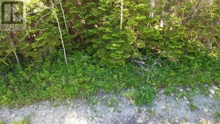 Photo 5: N/A Bay Estates Road S in Sheguiandah, Manitoulin Island: Vacant Land for sale : MLS®# 2095922