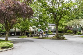 """Photo 14: 169 JAMES Road in Port Moody: Port Moody Centre Townhouse for sale in """"TALL TREES ESTATES"""" : MLS®# R2185076"""