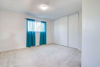 Photo 17: 4128 37 Street in Edmonton: Zone 29 House for sale : MLS®# E4253899