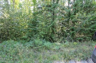 Photo 3: Lot 91 Anglemont Way in Anglemont: Land Only for sale (Shuswap)  : MLS®# 10069930