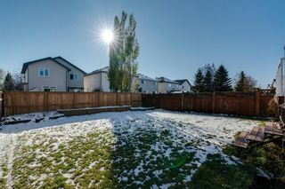 Photo 32: 125 Coventry Crescent NE in Calgary: Coventry Hills Detached for sale : MLS®# A1042180
