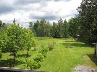 Photo 14: 11744 246 Street in Maple Ridge: Cottonwood MR House for sale : MLS®# R2374206