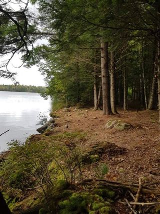 Photo 7: Lot 49 Eagle Rock Drive in Franey Corner: 405-Lunenburg County Residential for sale (South Shore)  : MLS®# 202125889