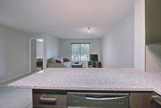 Photo 18: 115 14808 125 Street in Edmonton: Zone 27 Condo for sale : MLS®# E4247678
