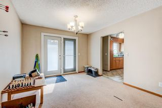 Photo 25: 203 Range Crescent NW in Calgary: Ranchlands Detached for sale : MLS®# A1111226