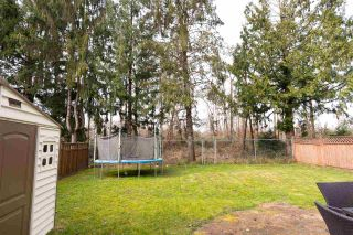 Photo 24: 20127 ASHLEY CRESCENT in Maple Ridge: Southwest Maple Ridge House for sale : MLS®# R2552264