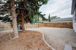 Photo 11: 9839 7 Street SE in Calgary: Acadia Detached for sale : MLS®# A1145363