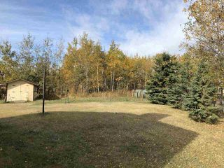 Photo 28: 17 Aspen Ridge Crescent: Rural Sturgeon County House for sale : MLS®# E4229491