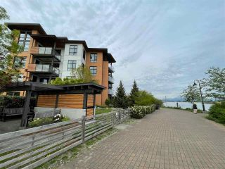 Photo 16: 205 220 SALTER Street in New Westminster: Queensborough Condo for sale : MLS®# R2574068