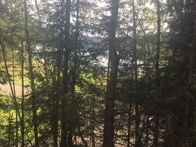 "Photo 1: Photos: LOT 1 BOWRON LAKE Road in Wells: Wells/Barkerville Land for sale in ""WELLS/BARKERVILLE"" (Quesnel (Zone 28))  : MLS®# R2399473"