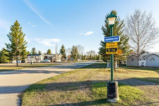 Photo 4: 370165 79 Street E: Rural Foothills County Land for sale : MLS®# A1114445