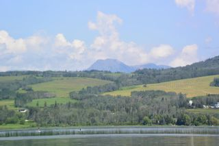 Photo 19: 6360 BERNIE Road in Smithers: Smithers - Rural House for sale (Smithers And Area (Zone 54))  : MLS®# R2385601