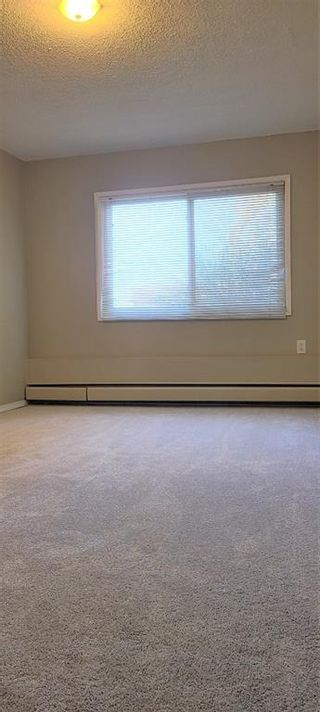 Photo 12: 101 3518 44 Street SW in Calgary: Glenbrook Apartment for sale : MLS®# A1093366