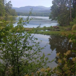 Main Photo: 5200 Brenton Page Rd in : Du Ladysmith Land for sale (Duncan)  : MLS®# 879975