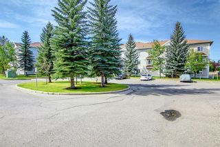 Photo 40: 1113 11 Chaparral Ridge Drive SE in Calgary: Chaparral Apartment for sale : MLS®# A1145437