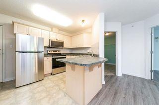 Photo 4: 401 12838 65 Street in Edmonton: Zone 02 Condo for sale : MLS®# E4253949