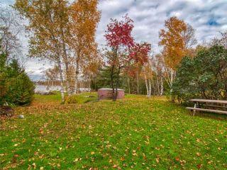 Photo 18: 6 Antiquary Road in Kawartha Lakes: Rural Eldon House (2-Storey) for sale : MLS®# X4277046
