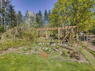 Photo 29: 24255 54 Avenue in Langley: Salmon River House for sale : MLS®# R2569756