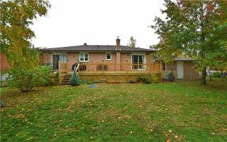 Photo 17: 40 N Wales Avenue in Adjala-Tosorontio: Everett House (Bungalow-Raised) for sale : MLS®# N3746746