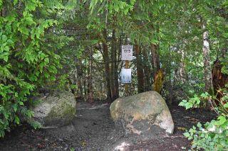 Photo 19: 7072 PORPOISE Drive in Sechelt: Sechelt District House for sale (Sunshine Coast)  : MLS®# R2553985