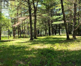 Photo 2: Medway River Road in Bangs Falls: Vacant Land for sale : MLS®# 202122898