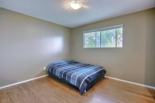 Photo 10: 1228 19 Street NE in Calgary: Mayland Heights Detached for sale : MLS®# A1118594