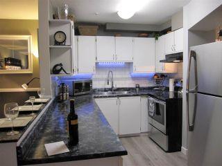 "Photo 8: 306 11671 FRASER Street in Maple Ridge: East Central Condo for sale in ""BELMAR TERRACE"" : MLS®# R2068523"