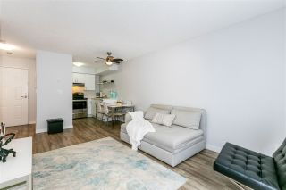 Photo 3: 302 1948 COQUITLAM Avenue in Port Coquitlam: Glenwood PQ Condo for sale : MLS®# R2525718