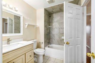 Photo 18: 262 Ormond Drive in Oshawa: Samac House (2-Storey) for sale : MLS®# E5228506