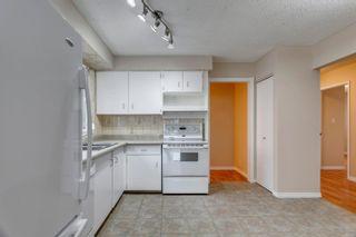 Photo 16: 13816 25 Street in Edmonton: Zone 35 House for sale : MLS®# E4255578