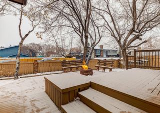Photo 38: 124 QUEEN TAMARA Road SE in Calgary: Queensland Detached for sale : MLS®# A1086377