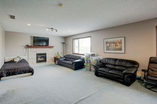 Photo 24: 325 CORAL SPRINGS Place NE in Calgary: Coral Springs Detached for sale : MLS®# A1066541