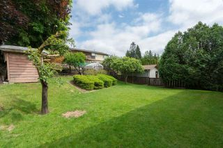 Photo 19: 2590 SPRINGHILL Street in Abbotsford: Abbotsford West House for sale : MLS®# R2269802