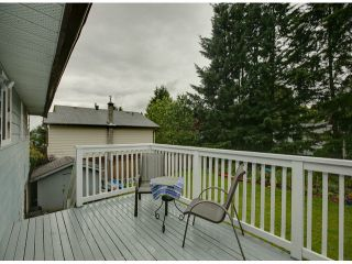 Photo 16: 32395 PTARMIGAN Drive in Mission: Mission BC House for sale : MLS®# F1315198