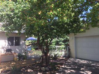 Photo 37: 116 Cedarille Green SW in Calgary: Cedarbrae Detached for sale : MLS®# A1085788