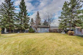 Photo 36: 132 LAKE ADAMS Green SE in Calgary: Lake Bonavista House for sale : MLS®# C4142300