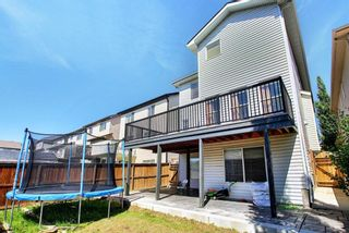Photo 30: 143 Evanston View NW in Calgary: Evanston Detached for sale : MLS®# A1122212
