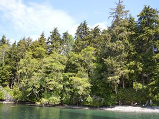 Photo 9: Lot 7 Pearse Island in : Isl Small Islands (North Island Area) Land for sale (Islands)  : MLS®# 862466