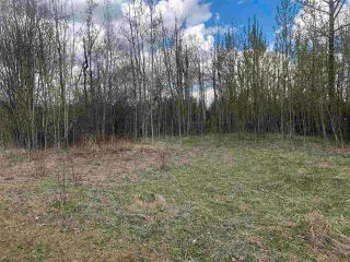 Photo 3: 97-15065 Twp Rd 470: Rural Wetaskiwin County Rural Land/Vacant Lot for sale : MLS®# E4243872