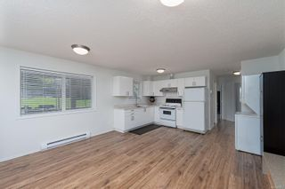 Photo 37: 3859 Epsom Dr in : SE Cedar Hill House for sale (Saanich East)  : MLS®# 872534