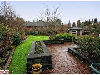 """Photo 10: 14492 29A Avenue in Surrey: Elgin Chantrell House for sale in """"ELGIN CHANTRELL"""" (South Surrey White Rock)  : MLS®# F1227891"""