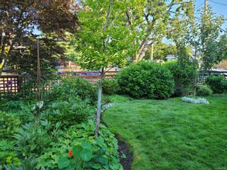 Photo 3: 129 MOSS St in : Vi Fairfield West House for sale (Victoria)  : MLS®# 883349