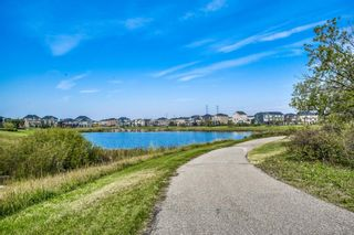Photo 45: 437 Rainbow Falls Way: Chestermere Detached for sale : MLS®# A1144560