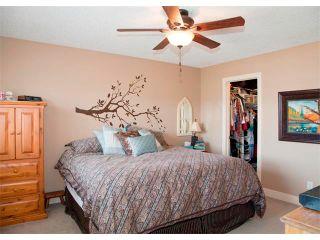 Photo 13: 40 DRAKE LANDING Drive: Okotoks House for sale : MLS®# C4006956