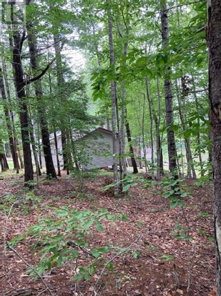 Photo 2: Lot Gulch Road in Labelle: Vacant Land for sale : MLS®# 202120717