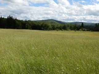 Photo 6: Lot 17 Second Division Road in Heathbell: 108-Rural Pictou County Vacant Land for sale (Northern Region)  : MLS®# 202116209