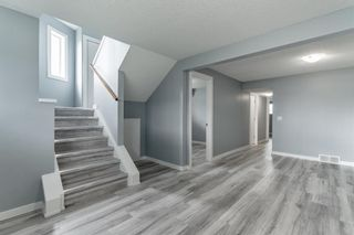Photo 26: 23 Erin Meadows Court SE in Calgary: Erin Woods Detached for sale : MLS®# A1146245